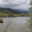 WFA and Swiftwater with Baker Ewing on the Snake River in Jackson, Hole