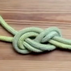 Knots Knots Knots: Figure of 8 on a Bight